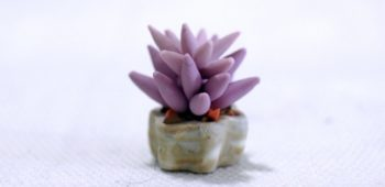 Clay Miniature Purple Succulent Plant